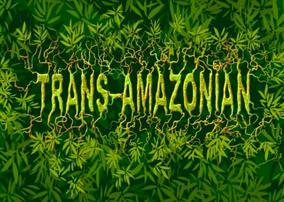Trans-Amazonian Title