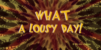 What a Lousy Day!