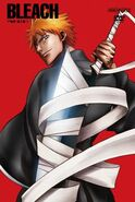 Bleach cover dvd 1