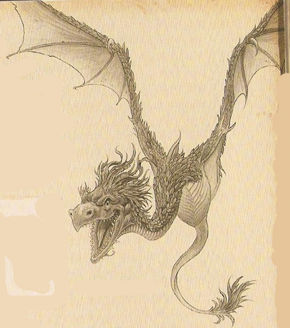 File:Am. Amphithere Dragon.png