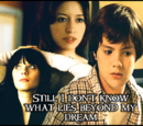 Still I don't know what lies beyond my dream