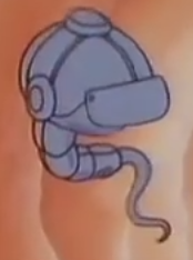 File:Spermatozoon Cell.png
