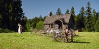 Sheep Farm/Gallery