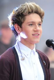 Niall-Horan-One-Direction-2013-Hairstyles-Trends