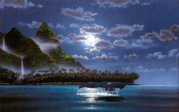 Ws Island Palms Ocean Night Whale 1920x1200 (1)