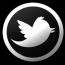 @OneDirection - Twitter