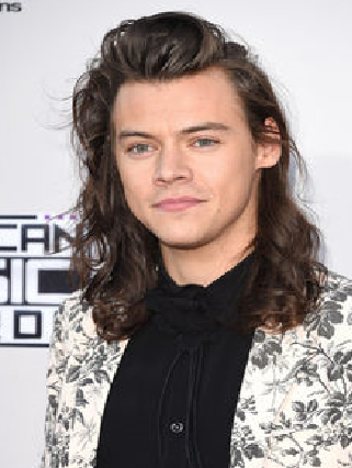 Datei:Harry Styles.png