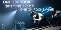 COUNTDOWN JAPAN 2013/2014