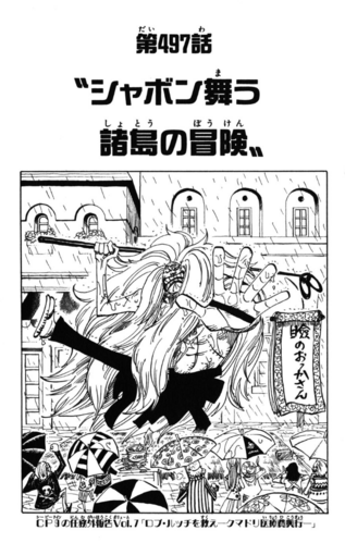 Chapter 497