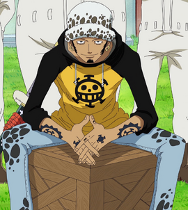 Trafalgar D. Water Law Anime Pre Timeskip Infobox