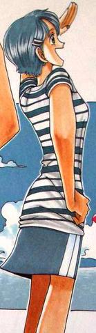 File:Ann Manga Color Scheme.png