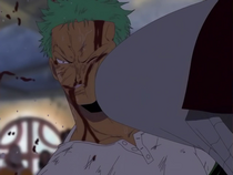 Do Not Fight Zoro