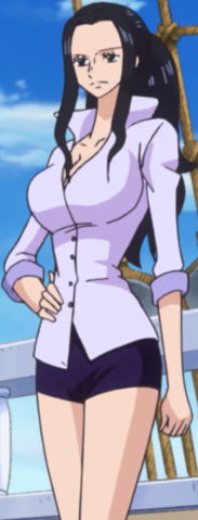File:Robin's Second Outfit After Leaving Punk Hazard.png