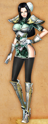File:Robin 2nd DLC Pirate Warriors 2.png