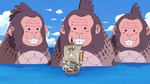 Sea Monkeys