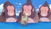 Sea Monkeys.png