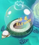 Sea Turtle Elevator