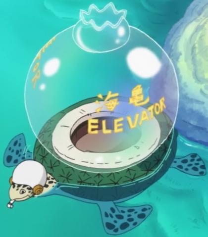 File:Sea Turtle Elevator.png