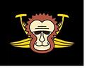 Coalizione della montagna delle scimmie