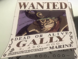 Gally Bounty Poster