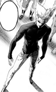 Garou Full Body