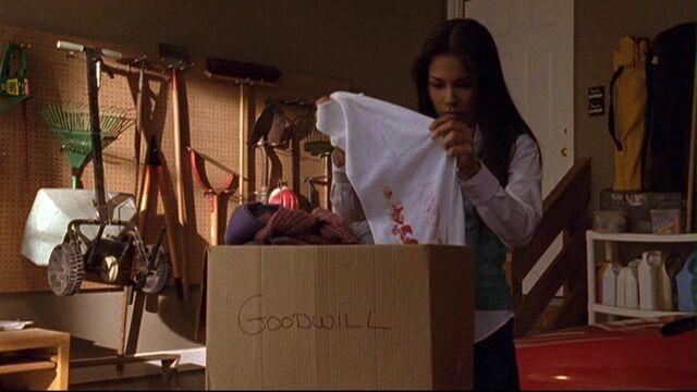 File:217 an finds shirt.jpg