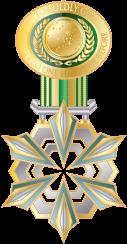 File:Cochrane-MedalofDiscovery.png