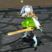 Twin Swords