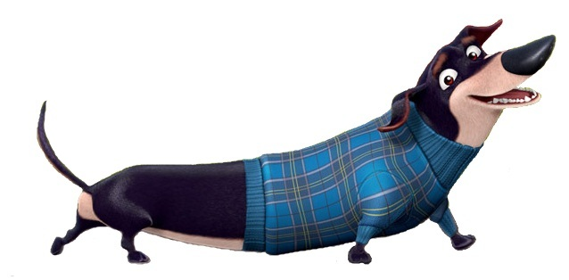 Mr on weiner dog in a bun