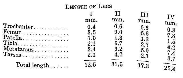 File:Cynorta bromeliacia Goodnight 1947 table.jpg
