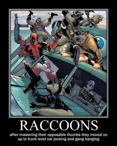 File:Raccoons raccoons deadpool car jcacking gang banging trucker demotivational poster 1262100881 13514.jpg