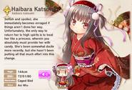 Haibara Katsumi Album Entry