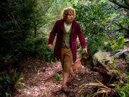 HobbitJourney 086