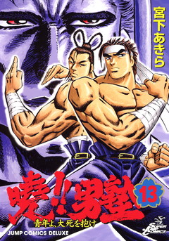 File:Akatsukiv13cover.jpg