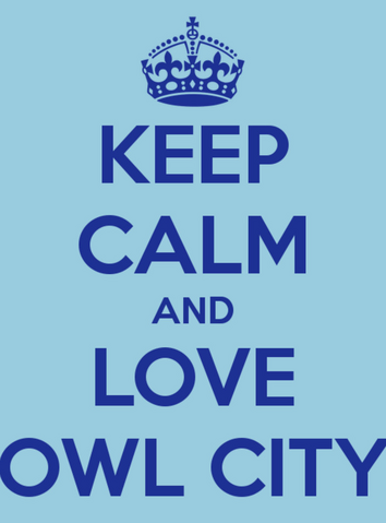 File:Keep Calm and Love Owl City.png