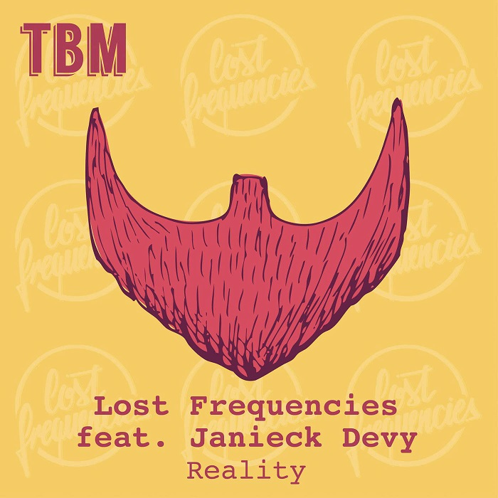 Lost frequencies/janieck devy reality