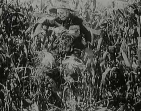 File:HIS MAJESTY THE SCARECROW OF OZ.jpg