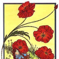 Poppies by W. W. Denslow