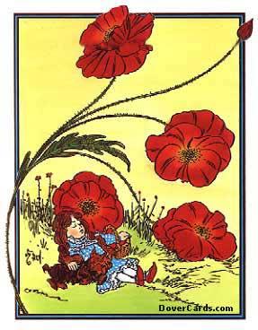 File:Poppies2.jpg