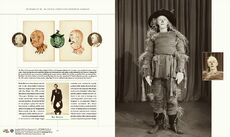 Scarecrow-costume86k