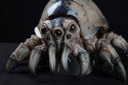 Kaiju Skinmite/Gallery   Pacific Rim Wiki   FANDOM powered ... Pacific Rim Kaiju Crab