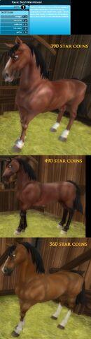 File:My new horses -3.jpeg