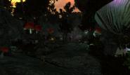 Haunted Valley Toadstools 001