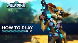 Paladins - How to Play - Pip (The Ultimate Guide!)