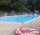 BSA Swim Test