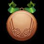 Bronze medal large