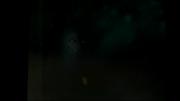 Wererwolf 2
