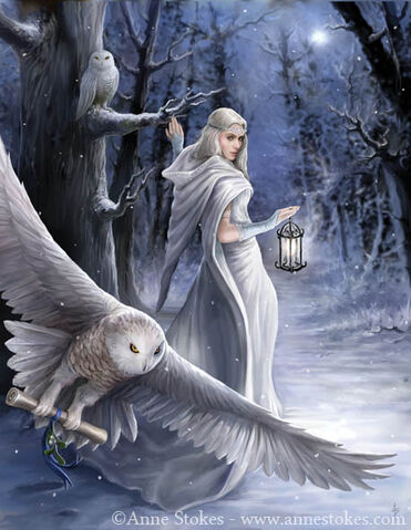 File:Midnight Messanger by Anne Stokes.jpg