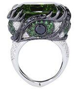 Envys ring