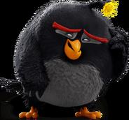 Bomb angry birds 2016